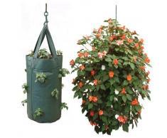 Sacchetto di Verdure di Nutley Appendere Scuro Piante di Pomodoro Verde
