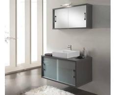 TFT Home Furniture Arredo Bagno Gv01 Color Pino Grigio