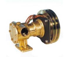 ANCOR Pompa PM 36EM a girante elastica autoadescante, in bronzo, per raffreddamento motori