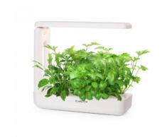 GrowIt cucina Smart Indoor Garden 12 piante 25W LED 2 litri