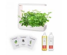 GrowIt Cuisine Starter Kit Asia 12 Piante 25W LED Asia-Seeds Soluzione Nutritiva
