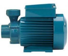 Calpeda SPA Elettropompa con girante periferica Calpeda CTM 60 0,45 HP