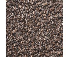 Andiamo 700606 Samson - Zerbino per ingresso in cotone, lavabile in lavatrice a 30 gradi, 50 x 80 cm, colore marrone