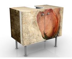 Mobile per lavabo design Inner Rose 60x55x35cm, basso, Larghezza: 60cm, regolabile, mobiletto da lavandino, lavandino, mobiletto da lavabo, lavabo, mobiletto, bagno, bagnetto, mobile da bagno