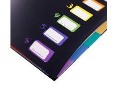 Scriptract - Cartellina portadocumenti espandibile, 13 tasche, formato A4, a fisarmonica, portadocumenti portatile con strato interno colorato per ufficio/scuola/famiglia 6 multicolore