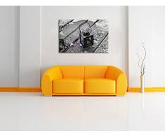 Lanterna con fiori sotto la pioggia nero / bianco Dimensioni: 80x60 su tela, XXL enormi immagini completamente Pagina con la barella, stampa d'arte sul murale con telaio, più economico di pittura o un dipinto a olio, non un manifesto o un banner,