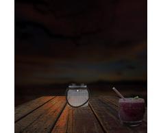 Ranex GTS-001-DT Lampada Solare da Giardino Sensore Giorno/Notte Barattolo LED Incluso, Bianco