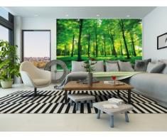 Bosco FOTOMURALE - bosco verde come quadro -tappezzeria da parete - XXL bosco luminoso decorazione da parete 140 cm x 100 cm