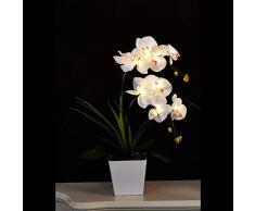 Floristlighting - Illuminazione LED a forma di vaso con orchidea artificiale, con 9 luci, alimentato con 2 batterie AA White