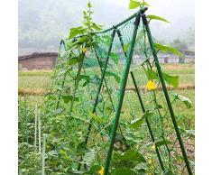 AmgateEu graticcio per piante, in rete di supporto per piante rampicanti, vite e Veggie Griglia rete