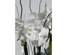 Grande pianta artificiale di Orchidea Phalaenopsis, colore: bianco con motivo floreale