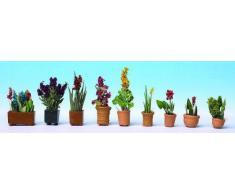 Piante ornamentali in vaso HO (9 pz)