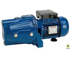 Speroni - Elettropompa autoadescante CAM 100 - 1 hp - 0,75 kw - 220 volt pompa monofase