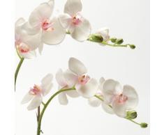 artplants Orchidea artifciale Phalaenopsis PABLA con terriccio, bianco-rosa, 70 cm - Orchidea ornamentale/Fiore artificiale