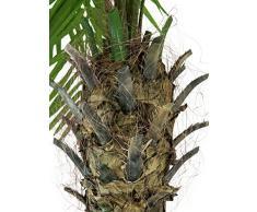 Palma Fenice artificiale con 10 ventagli, 300 cm - Palmizio / Pianta tropicale - artplants