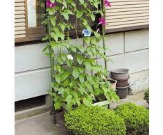 Rete a graticcio da giardino, 1 pezzo, rete per piante rampicanti, cetrioli, fiori 15 x 15 cm