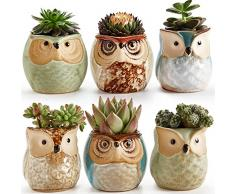 Sun Set E 6 Set di vasi in ceramica a forma di gufo 6,4 cm per piante grasse e cactus o bonsai, con foro