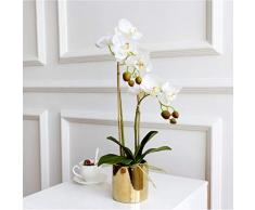 RANJN Tocco di Alta qualità Ben Progettato Fiore + Vaso Artificiale in Lattice Fiore Orchidea Tocco Reale, 1 Set