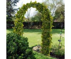 Graticcio Arco in acciaio da giardino per piante rampicanti rosa, 2,4 m