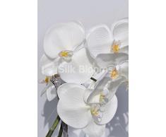 Fresh Touch, colore bianco Orchidea artificiale in vaso accordo Homewear