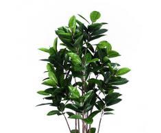 Euro Palms 82600151, Pianta ornamentale, Albero della gomma, 150 cm, Verde (Grün)