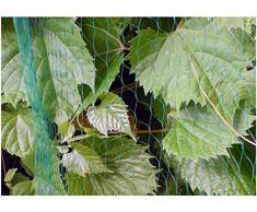 Verde durevole albero netto pianta bradas protezione frutta 19x19mm 4x20m contro uccello