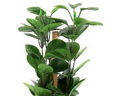 Euro Palms 82502106, Pianta ornamentale a foglia verde, 30 cm, Verde (Grün)