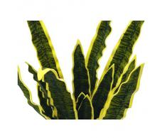 Euro Palms 82530578, Pianta ornamentale: Sansevieria Eva, 60 cm, Verde (Grün)