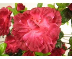 Artificiale Azalea Pianta rampicante con fiori boccioli Vine da GT Decorazioni Fuchsia