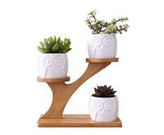 LINGLAN 1 set gufo in ceramica vasi da giardino moderno decorativo cameretta succulente piante vasi da fiori fioriere 3 bonsai con mensola ripiani in bambù