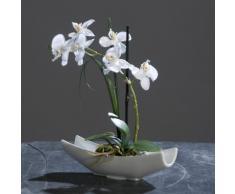 Orchidea Phalaenopsis artificiale con vaso in ceramica ciotola bianco crema 27 cm fiori artificiali di DPI