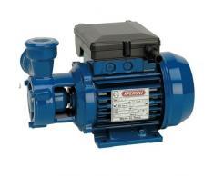 Speroni - elettropompa volumetrica KFM2 centrifuga - 0,6 kw - 220 volt - 58mt prevalenza - 60 litri minuto pompa monofase