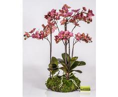 Orchidea artificiale Phalaenopsis PABLA con ceppo di muschio, rosa, 80 cm - Orchidea soggiorno / Orchidea elegante - artplants