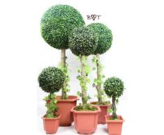 Premium libro albero con illuminazione solare, alto grande + grande sfera di bosso artificiale fiori piante plastica pianta plastica piante di facile manutenzione di alta qualità plastica fiore plastica fiori artificiali in plastica