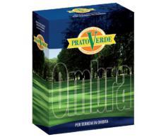 Ferri Sementi - Prato Ombra X 1 KG