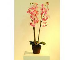 Euro Palms 82530327 - Pianta artificiale, Orchidea, 80 cm, colore: Rosa