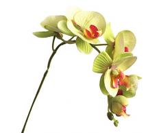 LPxdywlk 1 Fiore Artificiale Simulazione Fiore Finto Farfalla Orchidea Fai da Te Decorazione della Festa Nuziale Decorazione della Casa Interna Verde