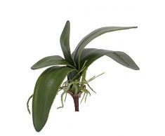 Foglie di orchidea phalaenopsis artificiale con radici aeree, verde, 17 cm, Ø 26 cm - Foglie decorative / Orchidea finta - artplants