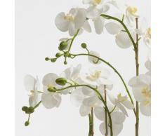Orchidea artificiale ALICIA in ciotola, 6 rametti, bianco-giallo, 80 cm - Orchidea in vaso / Orchidea Phalaenopsis - artplants