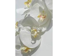 Orchidee Phalaenopsis artificiali, colore: bianco reale orchidee, colore: bianco