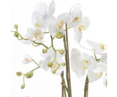 Orchidea artificiale Phalaenopsis PABLA con terriccio, bianco-giallo, 80 cm - Pianta da interno / Pianta appartamento - artplants