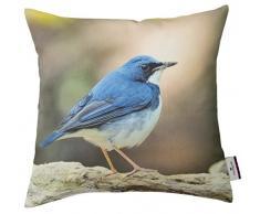 Tom Tailor 564144 Copricuscino, in cotone, 40 x 40 cm, motivo: uccellino blu