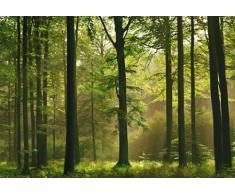 1art1 40585 - Carta da parati fotografica, motivo foresta autunnale, 8 unità, dimensioni 368 x 254 cm