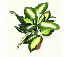 Geko - Pianta artificiale di Dieffenbachia scura, misura: M, 40 cm