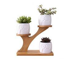 Vaso per Fiori per Piante grasse, Cactus, Piccolo Cactus, scaffale per Fiori in Legno, Supporto per Piante, Porta Piante per Cactus, Piante in Vaso e Piante grasse, 1 ripiano, 3 vasi di Fiori