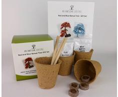 CRESCERE UN ALBERO BONSAI Cresci il tuo acero bonsai giapponese rosso e blu. Ottima idea regalo fai da te. Questo Set contiene tutto ciò che occorre per far crescere un albero Bonsai. Semi di bonsai, vasi biodegradabili per piante,