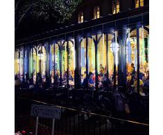 Luci di pioggia di meteora doccia, Vikdio 50cm 10 Tubi a spirale 540 LEDs impermeabile Luci di stringa per Natale Halloween Albero del giardino Home decor, Supporto 2 Set di gancio (Multicolore)