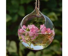 Vaso Vetro A Sfera Porta Fiore Piante Decorazioni Casa Giardino, Appendibile, Dia.10cm