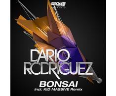 Bonsai (Hochanstaendig Remix)