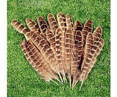 ERGEOB® Decorazione della natura gallo piuma di fagiano piuma 50/100 pezzi, 10-15 cm Laeng Ideale per i costumi, cappelli, artigianato, decorazioni per la casa, fai da te, etc.